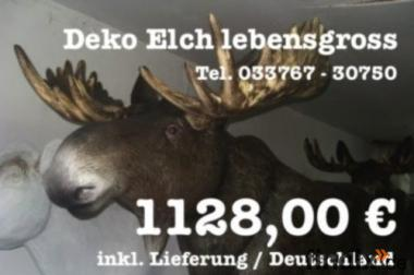 1128,00 € inkl. Lieferung / Deutschland für einen Deko Elch lebensgross