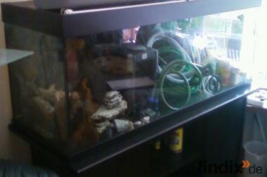 1,20m-Aquarium JUWEL RIO 300 incl. Unterschrank + allem Zubeh.