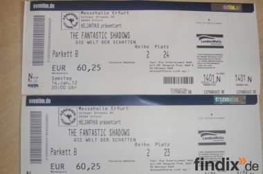 """2 Ticket """"The Fantastic Shadows - Die Welt der Schatten"""" Erfurt"""