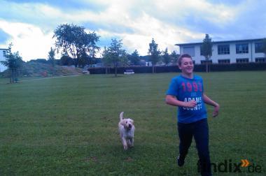 39 Jähriger Augsburger  sucht  1  Englische Bulldoggen Welpen