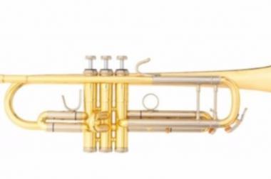 B&S Challenger Profi Trompete aus Goldmessing Mod. 3137G-L. Neu