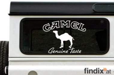 CAMEL Genuine Taste Aufkleber weiss ca. 15 x 11,7cm