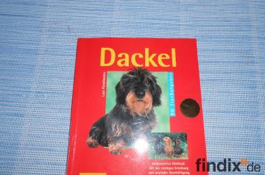 Dackel-Führer   ein  Buch für Hunde - Besitzer