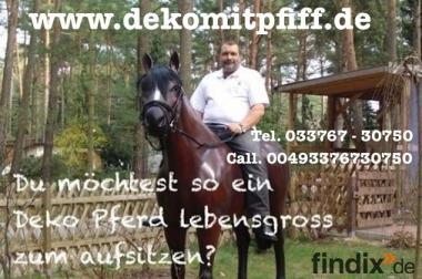Deko Kuh oder Deko Pferd für Deinen Gartzen als Blickfang ...