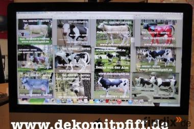 Du möchtest ne Deko Kuh ja dann einfach sehn und dann