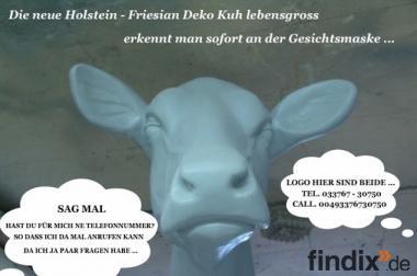Du möchtest ne Holstein Deko kuh lebensgross / neues Modell ?