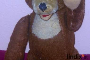 Fechter - Teddybär