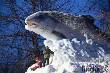 Fischzucht ökologische Investition.