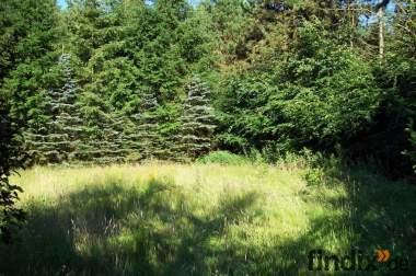 Garten 1200m² in ruhiger ländlicher Lage zu verpachten