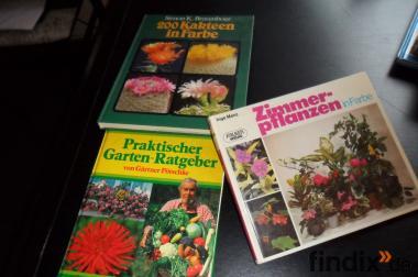 Gartenbücher  Pöschke  Kateen in Farbe  Zimmerpflanzen