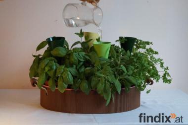 Gießhilfe für Topfpflanzen;erleichtert das Gießen; Das Geschenk!