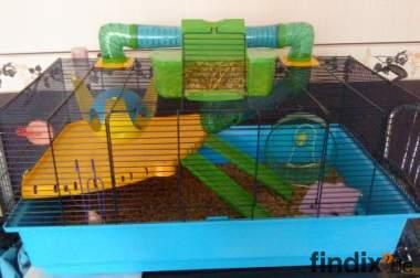 Hamsterkäfig NEU und groß mit VIEL Zubehör