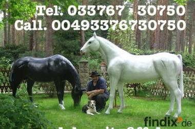 Hast Du noch kein Deco Horse für Deinen grossen Garten ?