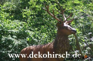 Hast ein grosses Grundstück ? für einen Deko Hirsch ?