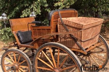 Historische Kutsche, Doktorkutsche