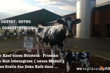 Hol Dir das Angebot - Deko Kuh lebensgross und dazu Gratis ein Deko Kalb