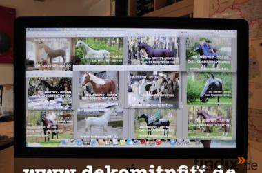 Hol Dir doch ein Deko Pferd auf Deine Gartenterasse ...