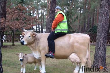 Hol Dir doch diese deko Kühe in deinen Garten...