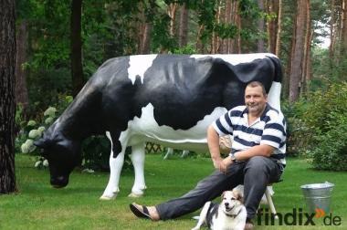 Holstein - Friesian Deko Melk Kuh lebensgross