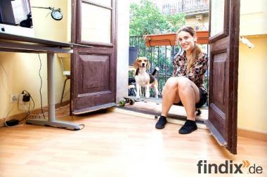 Hundesitter Teilzeit gesucht