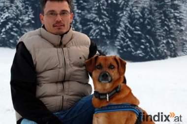 Hundetrainer & Hundesitting