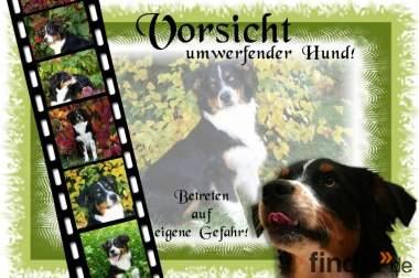 Hundewarnschilder aus Fotos von Ihrem Hund! Pixelschmied!