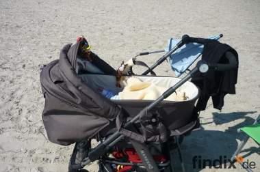 Kinderwagen erst 1 Jahr alt multifunktionsfähig Hoco Ranger