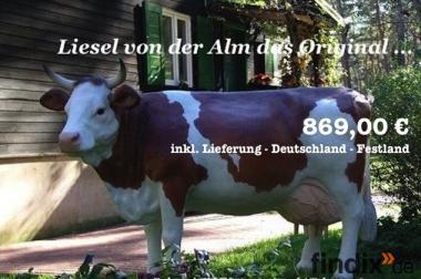 Machen Sie es wie andere Kunden Deko Kuh oder Deko Kühe ansehn ...