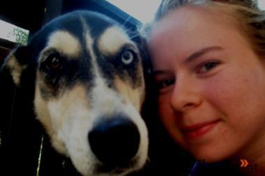 Mobile/s  Hundebetreuung und Hundetraining Raum Graz und Umgebung