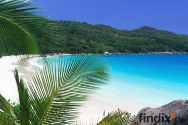 Nicht Auswandern,sondern Umzug in die Karibik!