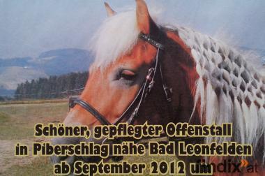 Offenstall/Pensionsstall nähe Bad Leonfelden