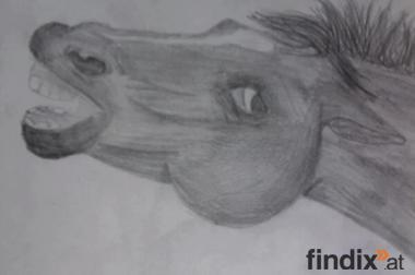 Zeichnung von Ihrem Tier