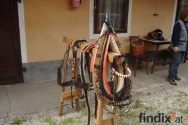 pferdezubehör