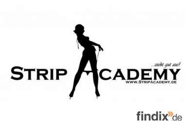 Privater Stripkurs, Stripschule, Stripunterricht, strippen lernen