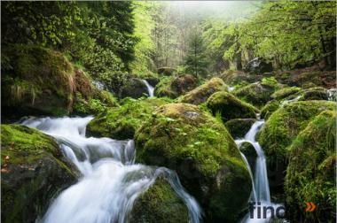 Raus aus der Stadt Bauernhaus in Schwarzwald nur für 300€ Monat
