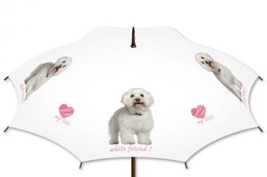 Regenschirm mit eigenem Bild oder Logo