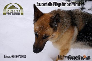 Sauberhafte Tierpflege für den Winter