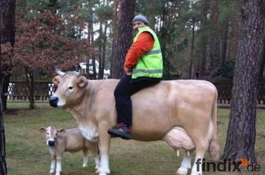 Sie möchten eine Deko Kuh und ein Deko Kälbchen gern erwerben?