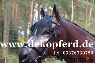 Sie suchen ein Deko Pferd lebensgross für Ihren Horseshop?