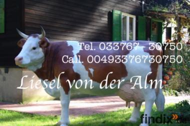 Sie suchen ne garten Deko Figur - Liesel von der Alm - Deko Kuh