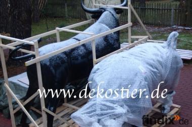 Sie wollten schon immer gern einen Deko Stier erwerben?