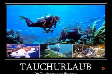 Tauchurlaub in der Top Tauchregion des Mittelmeers in Cabo de Pal