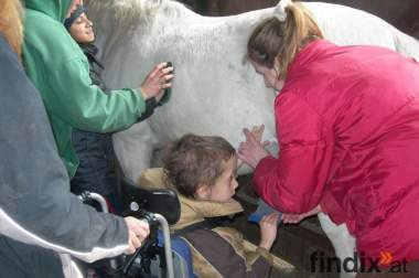 Tiergestützte Pädagogik