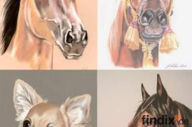 Tierportraits, Pferdeportraits nach Ihrem Foto