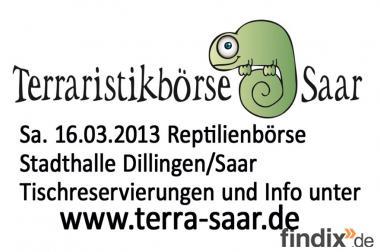 Tische für Reptilienbörse 16.03.2013 noch frei