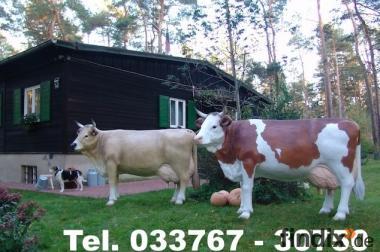 Zeig Deinen Nachbarn dass Sie schöne Deko Kühe haben...