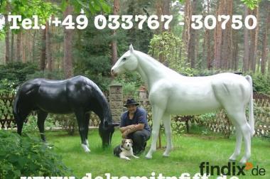 Zwei Deko Pferde lebensgross ein Preis ...