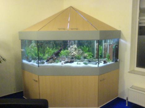 komplettaquarium 1200 liter 215767. Black Bedroom Furniture Sets. Home Design Ideas