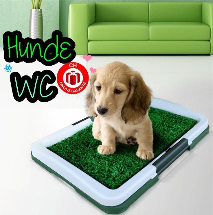 neue hunde welpentoilette welpen toilette wc kunst gras. Black Bedroom Furniture Sets. Home Design Ideas