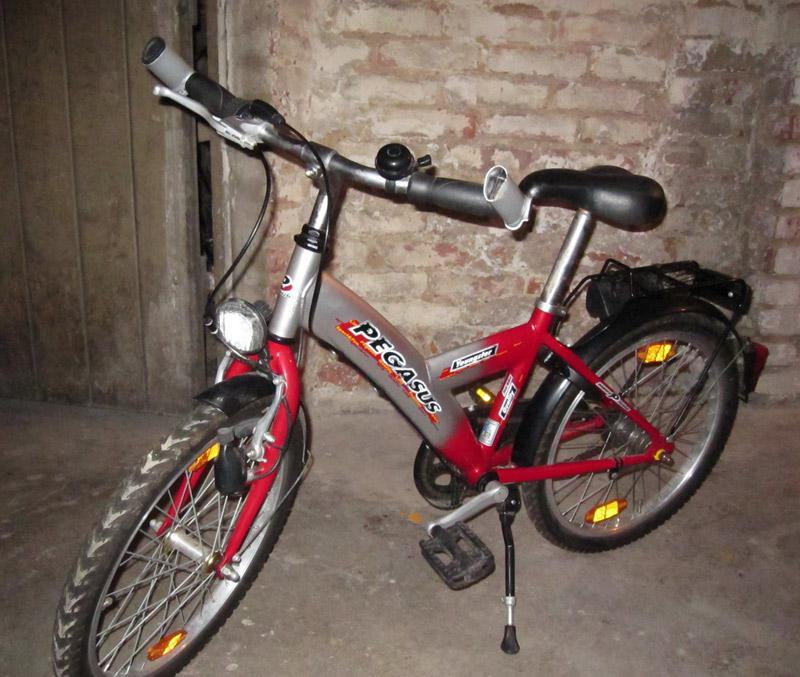 pegasus fahrrad 16 zoll